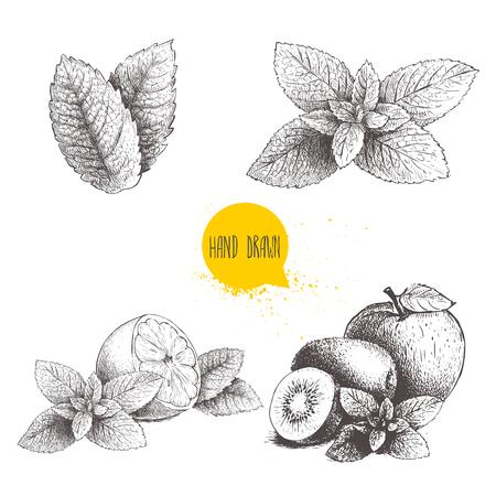 Hand drawn sketch style mint illustrations set. Çizim