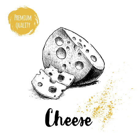 Hand drawn sketch style round head of cheese with sliced cheese pieces. Vector organic food illustration poster. Quality product. 向量圖像