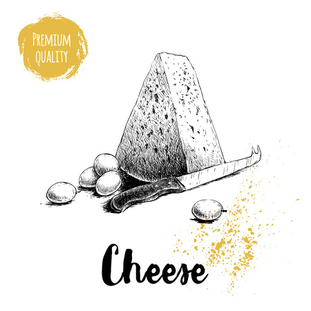 Hand drawn sketch style triangle piece of cheese. Cheese knife and grape. Vector organic food illustration poster. Quality product. Illustration