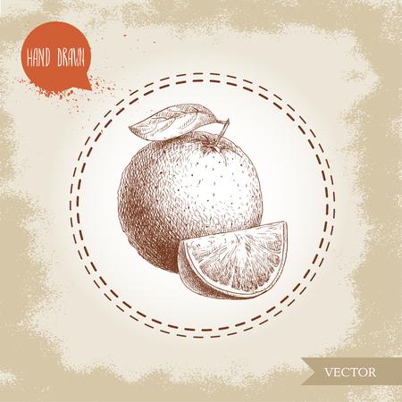 手描きのスケッチ スタイルのオレンジ色の果物の組成。全体の果物やセグメントのスライス。手作りの古い探している背景に分離されたベクトル柑