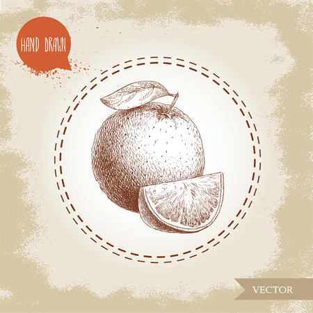 Hand drawn sketch style orange fruit composition. Whole fruit and segment slice. Hand made vector citrus fruit illustration isolated on old looking background. Imagens - 86145359