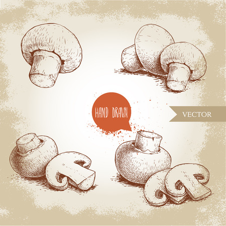 Hand drawn sketch style mushroom composition set