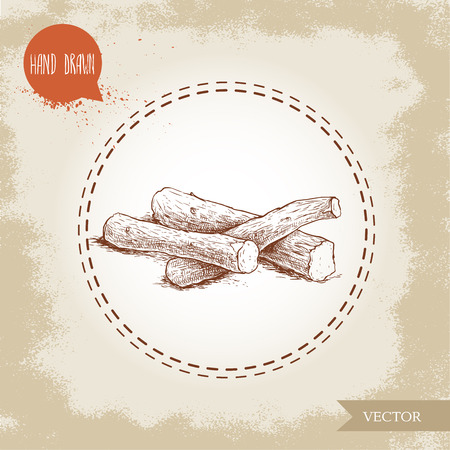 Hand drawn sketch style liquorice roots heap. Herbal and aromatic vector illustration.
