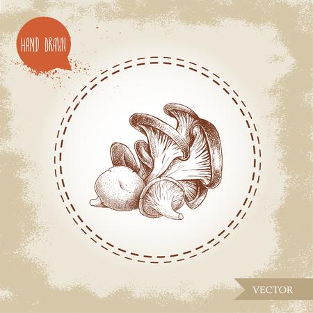 Hand drawn sketch style oyster mushroom bunch. Fresh farm food vector illustration.