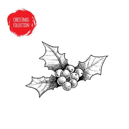 手描きスケッチ ホリー ベリー。クリスマス季節の植物。冬の休日の記号です。ベクター グラフィックは、白い背景で隔離。