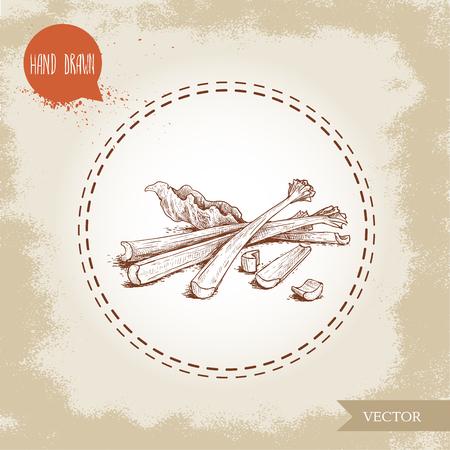 Hand getrokken schets stijl stelletje rabarber stengels met bladeren en plakjes. Biologische voeding component vectorillustratie.
