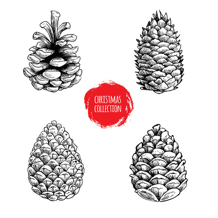 Hand drawn sketch pine cones set. Christmas collection isolated on white background. Vector illustrations. Great for seasonal holiday decor and greeting cards. Vettoriali