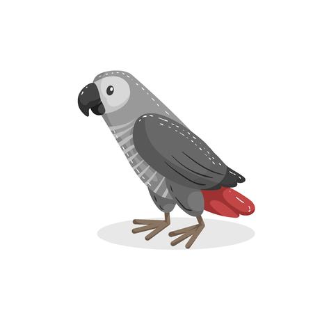 Cartoon trendy design african grey parrot. Wildlife and pets vector illustration.  Stock Illustratie