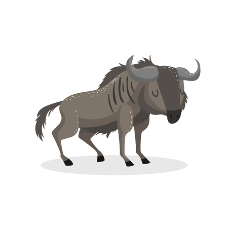 Cartoon trendy design wildebeest standing. African wildlife animal isolated on white background. Vector gnu illustration.