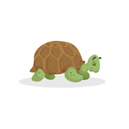 Cartoon trendy design African turtle. Sleeping jungle tropical animal. Wildlife and zoo vector education vector icon for kids.
