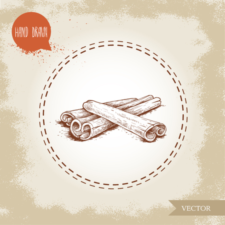 Hand drawn sketch style cinnamon sticks composition isolated on vintage background. Vector healthy spice.