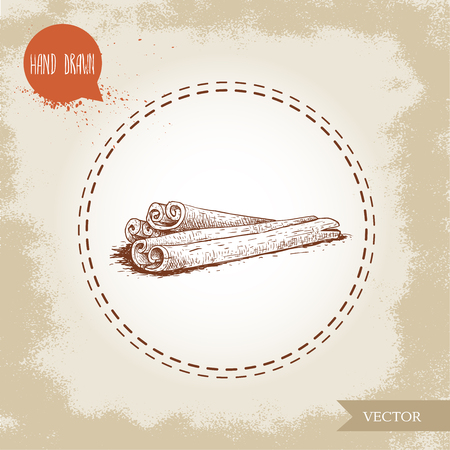 Hand drawn sketch style cinnamon sticks composition isolated on vintage background. Vector healthy spice and condiment illustration.