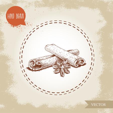 Hand gezeichnete Skizze Stil Zimtstangen und Anis Zusammensetzung isoliert auf Vintage Hintergrund . Vector gesunde Gewürz und Gewürze Illustration Standard-Bild - 93463159