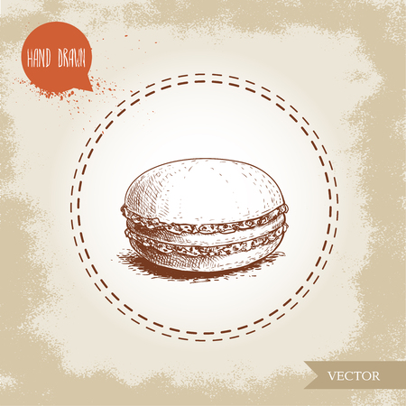 Single macaroon cookie on vintage old background. Delicious meringue based french pastry sweet hand drawn sketch style detailed vector illustration.