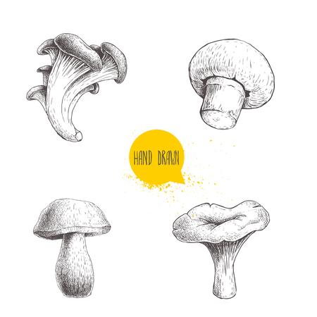 Ręcznie rysowane szkic stylu zestaw różnych grzybów leśnych. Pieczarki, ostrygi, kurki i borowiki. Ilustracje wektorowe surowej żywności ekologicznej eko na białym tle.