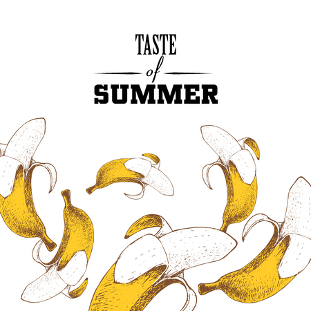 Taste of summer poster design template. Hand drawn colorful bananas.  Vector sketch illustration for party banners.