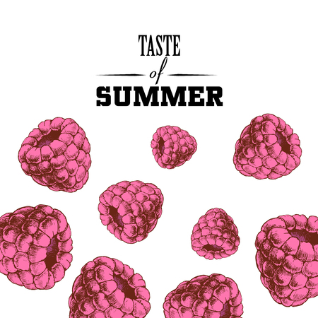 Taste of summer poster design template. Hand drawn sketch colorful raspberries.  Vector illustration for party banners and restaurant menu.  Vettoriali