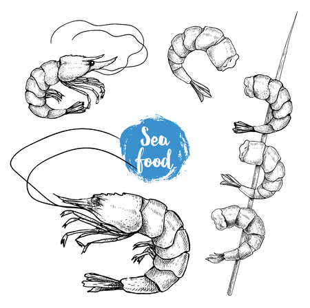 Hand drawn sketch style seafood set. Shrimps, prawns, grilled shrimps on bamboo stick collection vector illustrations.