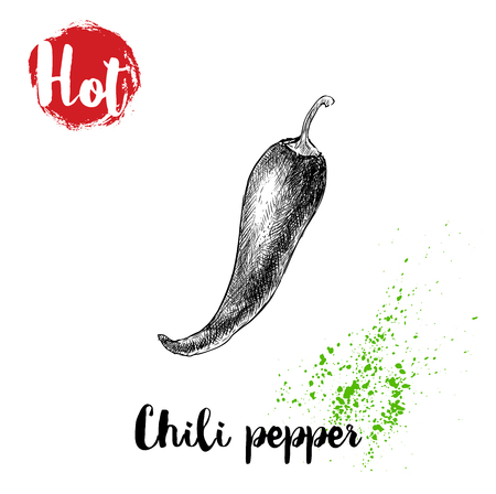 Hand drawn sketch style hot chili pepper poster. Red label with hot sign. Vector illustration isolated on white background.  イラスト・ベクター素材
