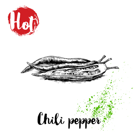 Hand drawn sketch style hot chili peppers poster. Whole an cut. Vector illustration isolated on white background.