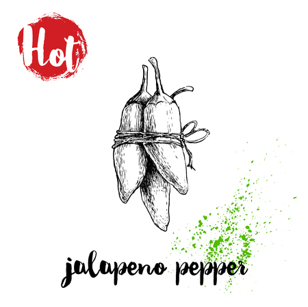 Hand drawn sketch style hot jalapeno peppertwine poster. Red label with hot sign. Vector illustration isolated on white background.