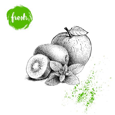 手描きスケッチスタイル健康的な果物。アップル、キウイフルーツ、ミントの葉の枝。ベクトルイラストは、白い背景に分離されています。