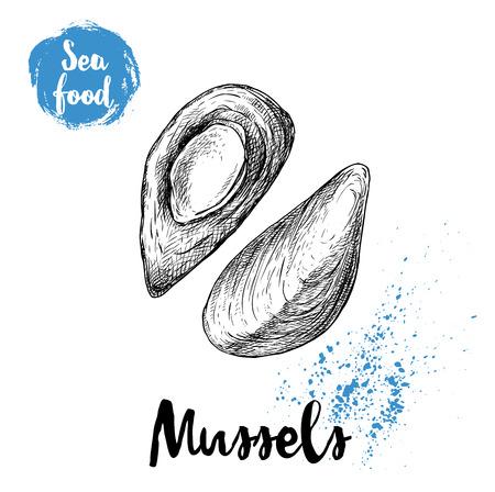 手描きのスケッチスタイルは、新鮮なムール貝を煮た。