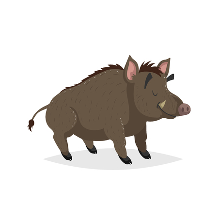 Dibujos animados de jabalí adulto alegre. Bosque de Europa y América del Norte animal. Piso con gradientes simples de diseño de moda. Ilustración de vector de educación