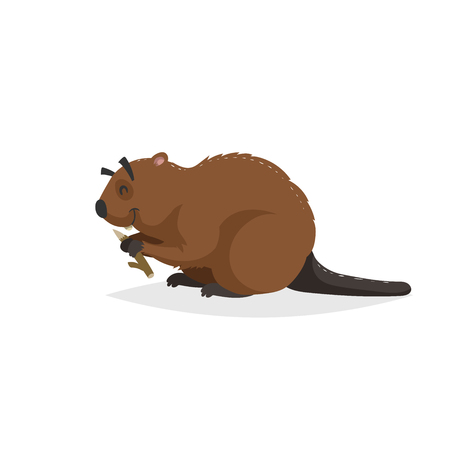 Cartoon cheerful beaver with piece of wood. Forest Europe and North America animal. Flat with simple gradients trendy design. Education vector illustration.