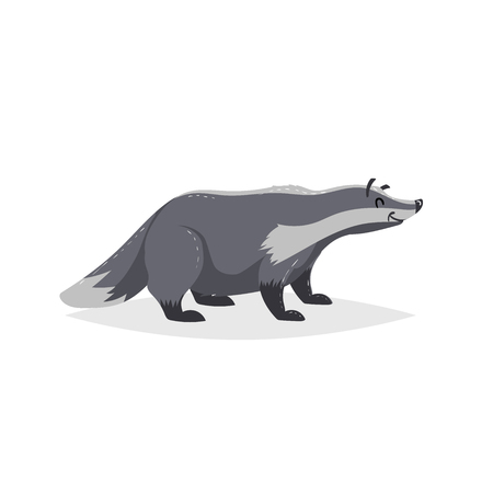 Cartoon cheerful badger. Forest Europe and North America animal. Flat with simple gradients trendy design. Education vector illustration. Ilustracja