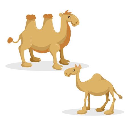 Cartoon trendy stijl kamelen set. Dromedariskameel en Bactrisch. Gesloten ogen en vrolijke mascottes. Vector dieren in het wild illustraties. Stock Illustratie