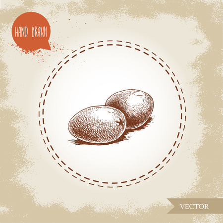 Hand drawn sketch style olives. Olive oil and healthy food vector illustration on vintage looking background. Иллюстрация