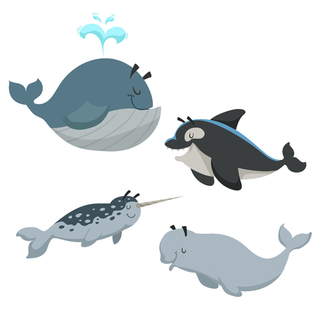 Cartoon sean animals set. Whale with fountain, killer whale orca, white beluga whale and narwhal. Sea and nord ocean animals. Kid education vector illustration collection. Ilustracja