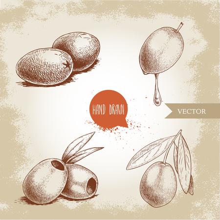 Sketch hand drawn olives set. Bunch, olive fruit with oil drop, boneless olives and olive branch with leaves. Vector illustration isolated on old background. Ilustração