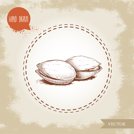 Pistachios hand drawn sketch style illustration. Open fried and fresh nuts. Vector illustration isolated on retro background. Ilustrace