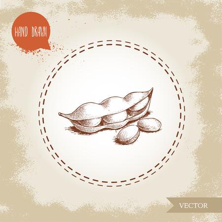 手描きのスケッチは、緑豆を描きました。大豆のアートワーク組成物は、古い背景に分離されています。民族と日本の健康食品。ベクターの図。