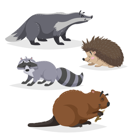 Forest animals set. Badger, hedgehog, raccoon, and beaver. Happy smiling and cheerful characters. Vector zoo illustrations isolated on white background.