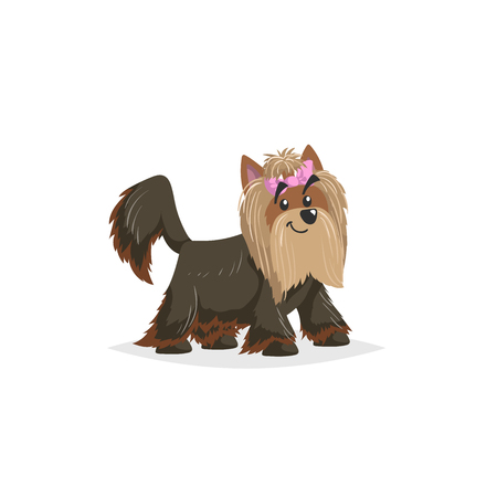 Cartoon Yorkshire terrier. Comic dog character vector illustration. Yorkie pet animal isolated on white background.