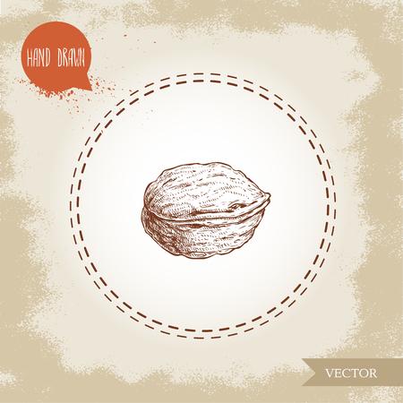Walnut sketch hand drawn. Eco and super food on vintage background. Vector illustration. Imagens - 99332210