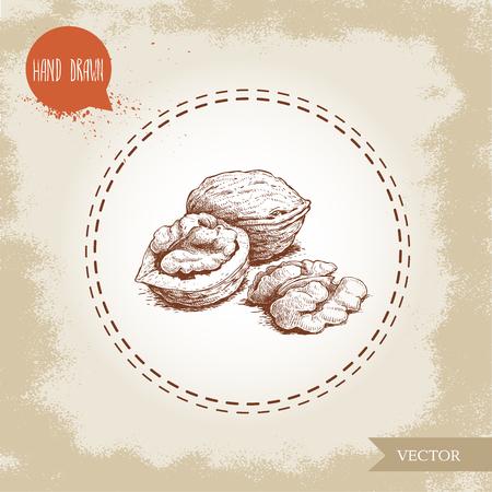 Main dessinée croquis de style de noix de coco collection de nourriture froide illustration vectorielle isolé sur fond vintage . nourriture saine et des objets de la nourriture Banque d'images - 99332506