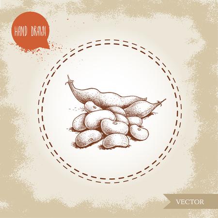 Hand drawn sketch style of white beans and pod vector illustration Ilustração