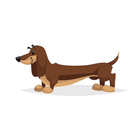 Cartoon dachshund dog standing. Simple gradient purebred vector illustration. Comic dog character. Pet animal isolated on white background.