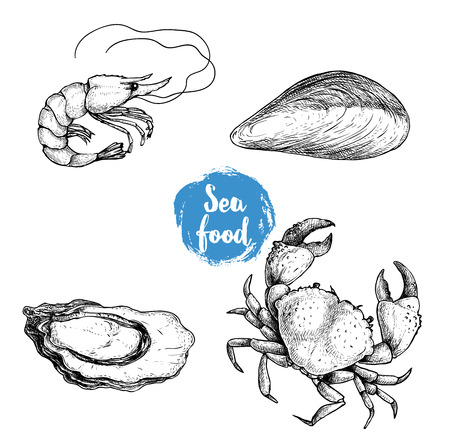 Seafood sketches set. Fresh shrimp, mussel, oyster and crab. Sea market products collection. Vector illustration isolated on white background.