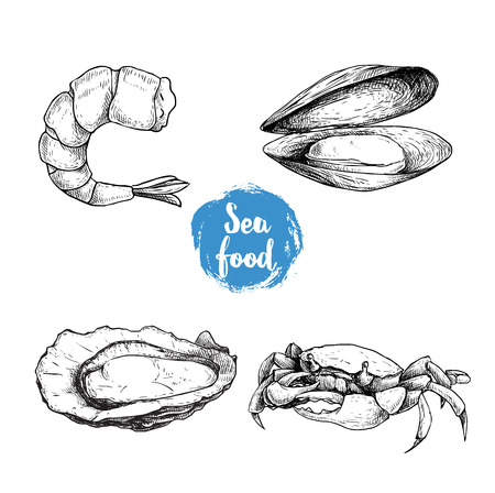 Seafood sketches set. Cooked grilled shrimp, opened mussel and oyster, crab. Sea market products collection. Vector illustration isolated on white background.