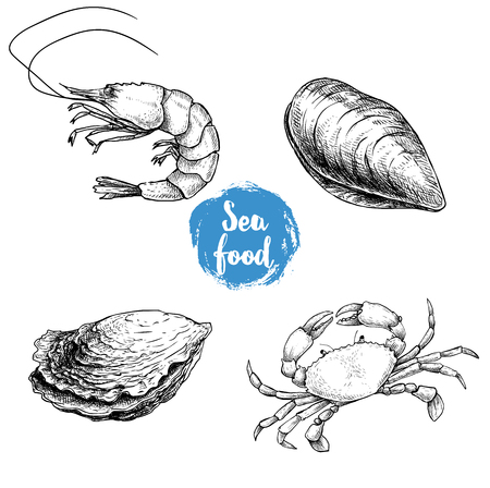 Seafood sketches set. Fresh shrimp, closed mussel and oyster, crab. Sea market products collection. Vector illustration isolated on white background.