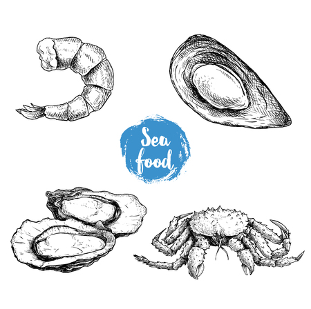 Seafood sketches set. Cooked grilled shrimp, opened mussel,  oysters group and king crab. Sea market products collection. Vector illustration isolated on white background. Vettoriali