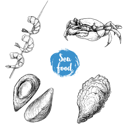 Seafood sketches set. Cooked grilled shrimps on bamboo stick, opened mussels, oyster and crab. Sea market products collection. Vector illustration isolated on white background.