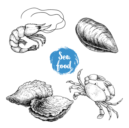 Seafood sketches set. Fresh shrimp, mussel, oysters, crab. Sea market products collection. Vector illustration isolated on white background. 写真素材 - 104065223