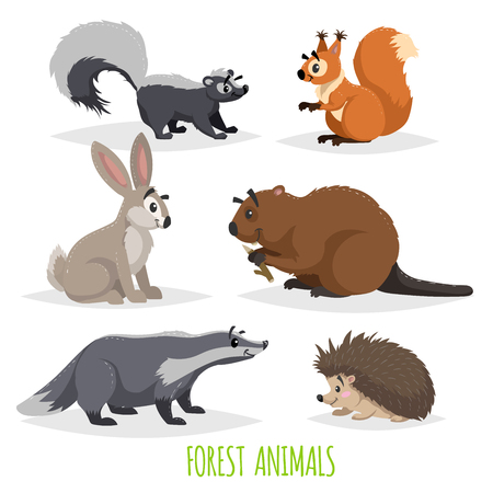 Cartoon forest animals set. Skunk, hedgehog, hare, squirrel, badger and beaver. Funny comic creature collection. Vector educational illustrations. Ilustracja