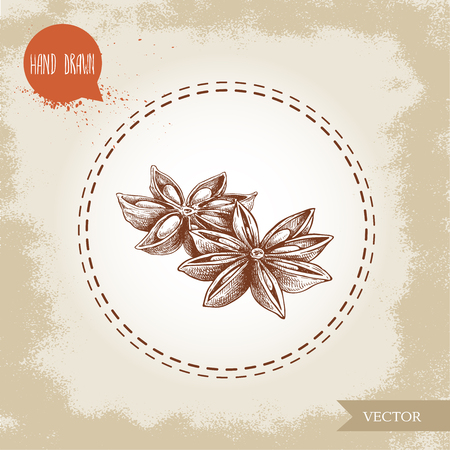 Hand drawn sketch style anise stars group. Engraved spice vector illustration isolated on old looking background.